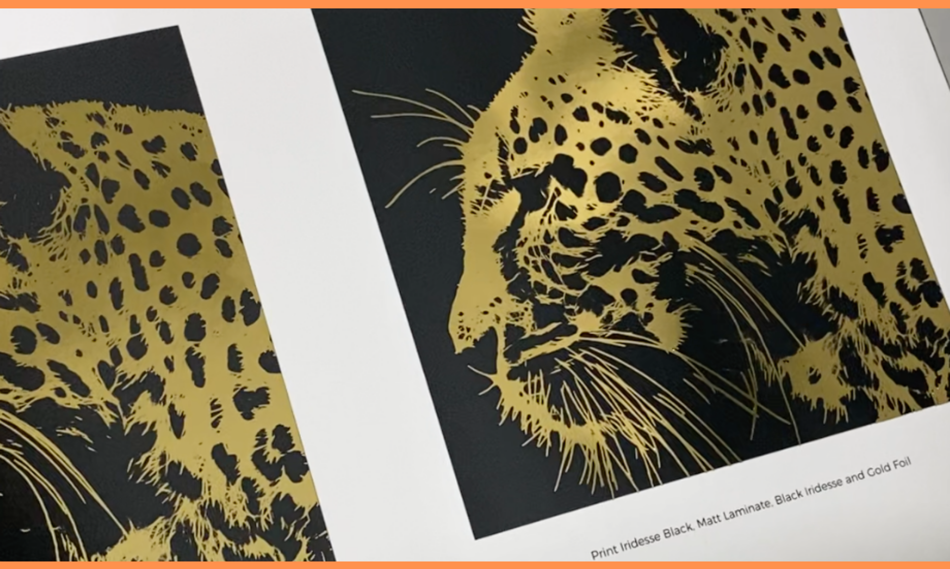 KNP | Variable digital foiling lion